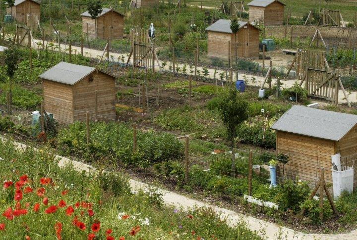 Les jardins familiaux de gouzeaucourt for Jardin familiaux